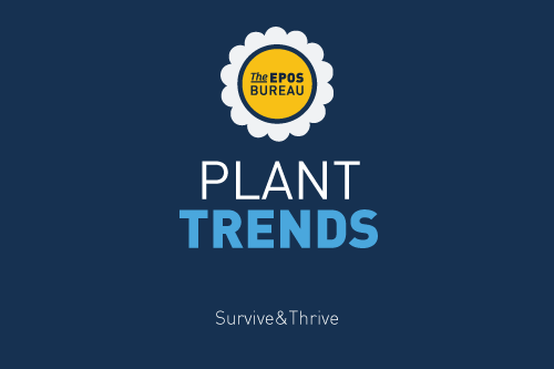 Plant Trends During COVID-19